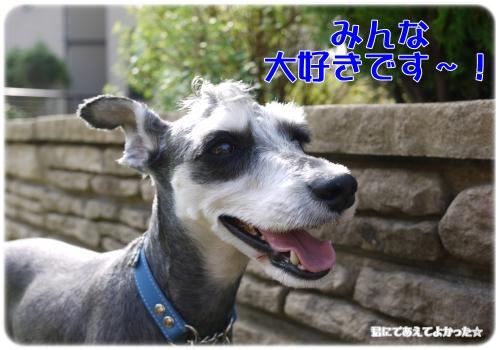 787_20111112213709.jpg