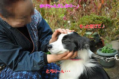 20121123-kis05.jpg