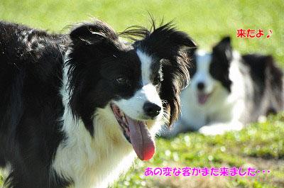 20121123-wan01.jpg