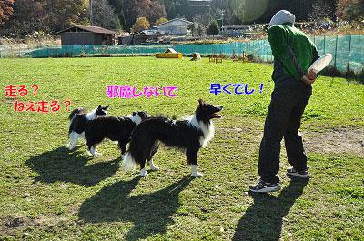20121123-wan03.jpg