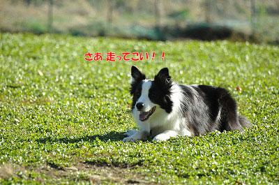 20121123-wan04.jpg