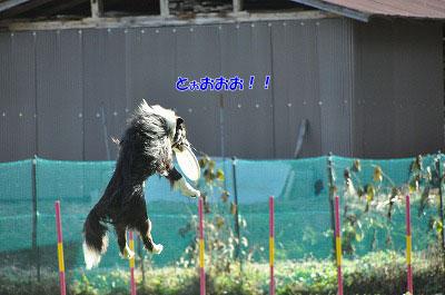 20121123-wan05.jpg