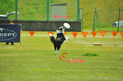 20121123-wan06.jpg