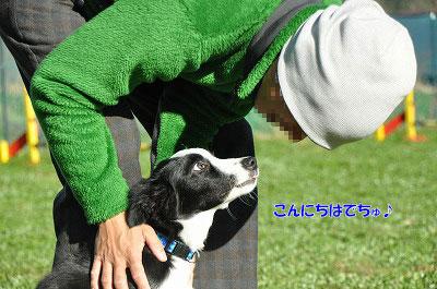 20121123-wan07.jpg
