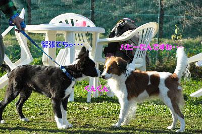 20121123-wan10.jpg