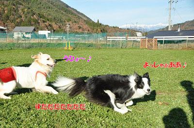 20121123-wan13.jpg