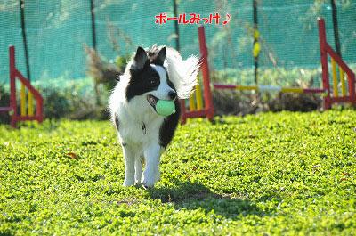 20121123-wan18.jpg