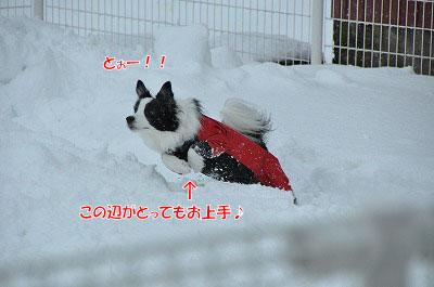 20121208-ami04.jpg