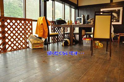 20130511-wan20.jpg