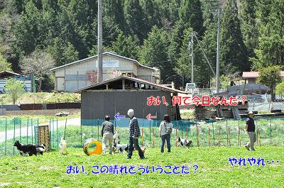 20130512-wan05.jpg