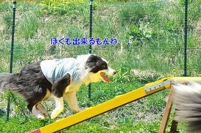 20130512-wan22.jpg