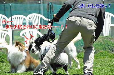 20130512-wan34.jpg