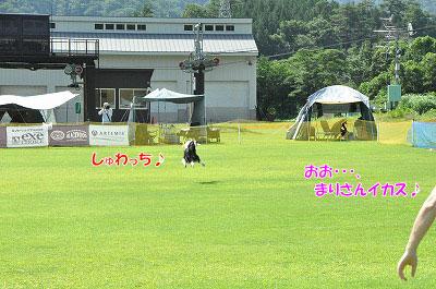 20130720-ima09.jpg