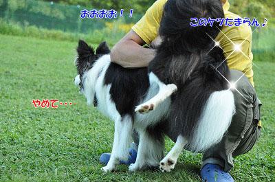 20130814-wan02.jpg