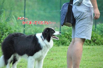 20130814-wan05.jpg