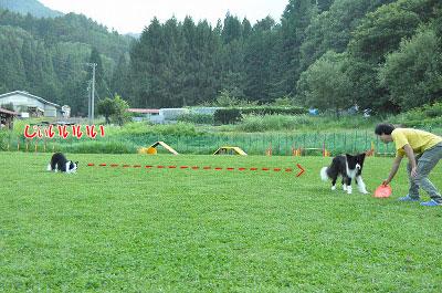 20130814-wan06.jpg