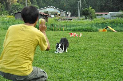 20130814-wan09.jpg