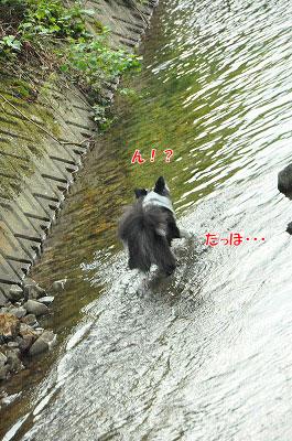 20130814-wan25.jpg