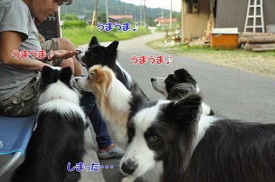 20130814-wan28.jpg