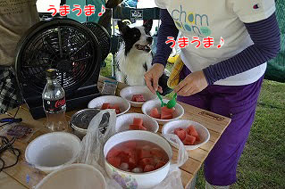 20130817_oyu_miz06.jpg