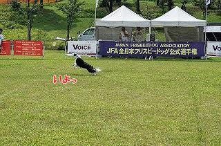 20130817_oyu_p2-2.jpg