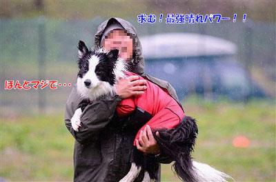20130901_wan03.jpg