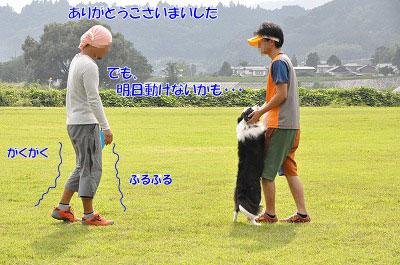20130914-npa13.jpg