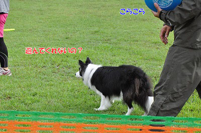 20130915-awi04.jpg