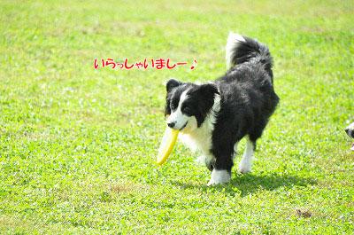 20130922-23_wanw00.jpg
