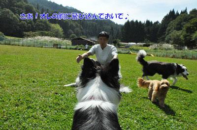 20130922-23_wanw10.jpg