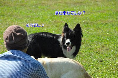 20130922-23_wanw21.jpg