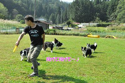20130922-23_wanw22.jpg