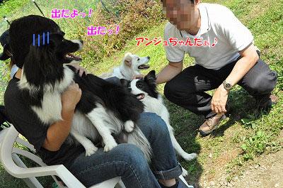 20130922-23_wanw29.jpg