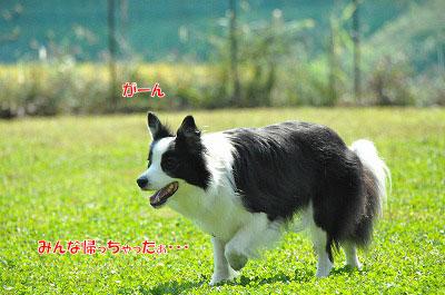 20130922-23_wanw32.jpg