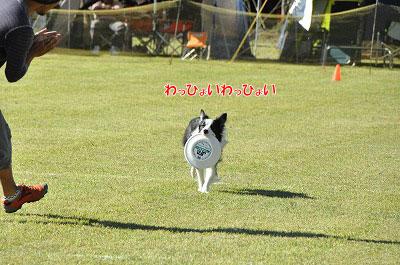 20130929_muon06.jpg