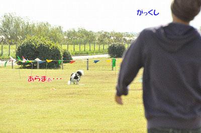 20131027_aga09.jpg