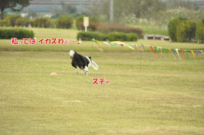 20131027_aga19.jpg