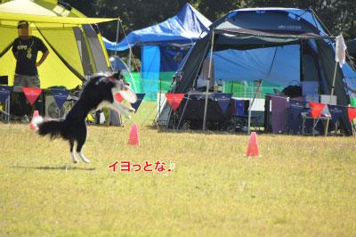 20141012NDA7.jpg