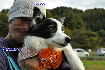 20141109mari-5.jpg