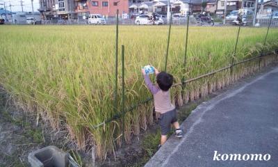 DSC_0004_convert_20110929105525.jpg