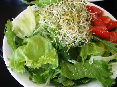 基本のグリーンサラダ