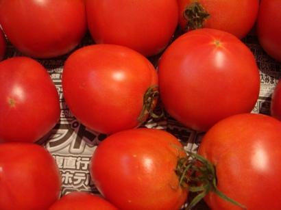 規格外トマト(生食用)