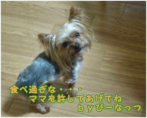 26_20130122002120.jpg
