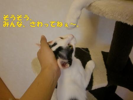 CIMG8840.jpg
