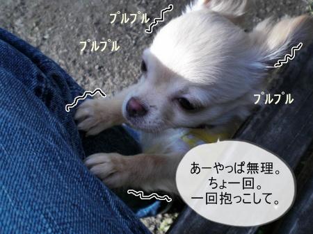 new_CIMG2515_20120330142322.jpg