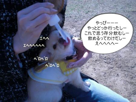 new_CIMG2542.jpg