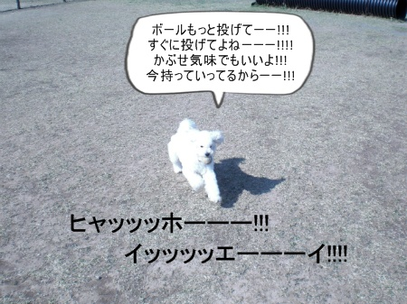 new_CIMG2548.jpg