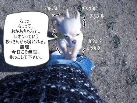 new_CIMG2549.jpg