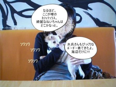 new_CIMG2693.jpg