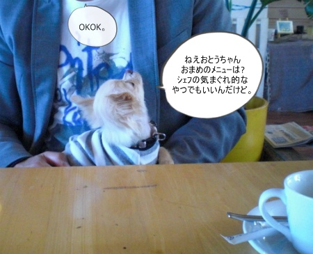 new_CIMG2698.jpg